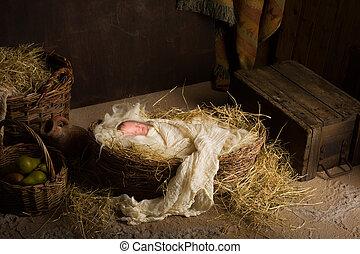 Una muñeca en la escena de la Navidad