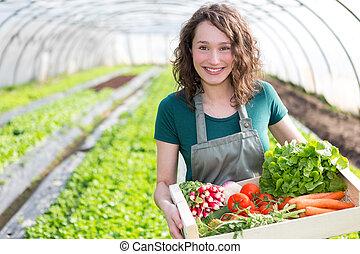 Una mujer joven y atractiva cosechando vegetales en un invernadero