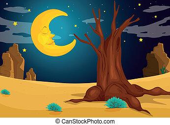 Una noche de luna