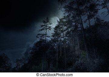 Una noche en las montañas