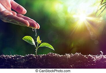 Una nueva vida, una planta de agua