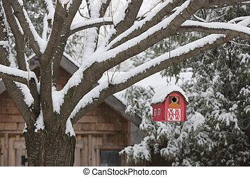 Una pajarera roja en un árbol en invierno