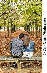 Una pareja joven sentada en un banco en un parque en otoño
