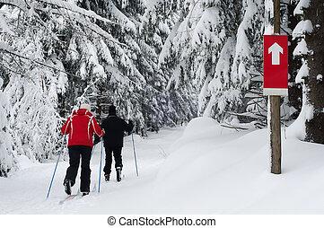 Una pareja mayor practicando esquí de contry