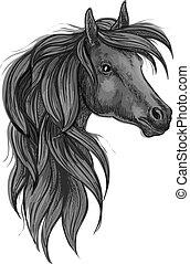Una pizca de cabeza de caballo de raza negra