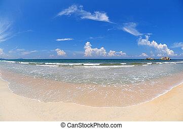 Una playa amplia.