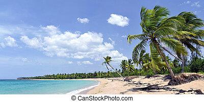Una playa tropical impresionante