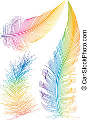 Una pluma de vector colorida