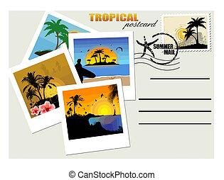 Una postal tropical
