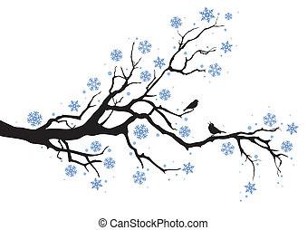 Una rama de árbol de invierno