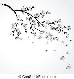 Una rama floreciente de cereza japonesa