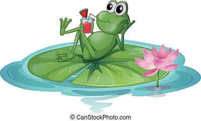 Una rana relajándose en una hoja