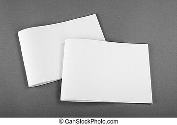 Una revista de Brochure en blanco aislada en gris