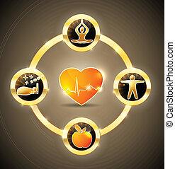 Una rueda de salud del corazón
