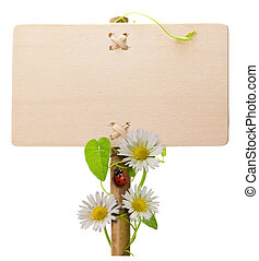 Una señal verde de madera sobre un fondo blanco con margaritas, mariquitas y hojas verdes Ladybird está sobre el poste de la bandera