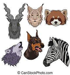 Una serie de cabezas de animales aisladas en un fondo blanco. Gráficos vectoriales.