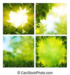 Una serie de surtidos de verano natural para tu diseño