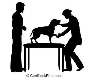 Una veterinaria con perro