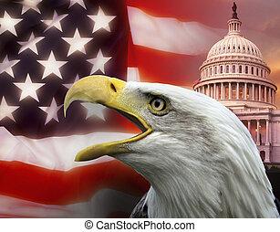 unido, washington, -, cc, estados, américa