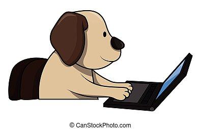 usar ordenador, perro