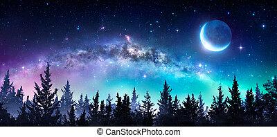 Vía láctea y luna en el bosque nocturno