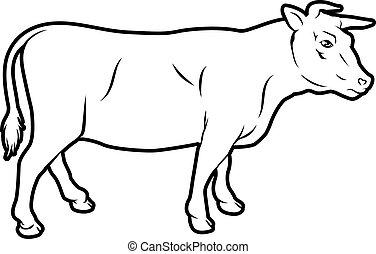 vaca de carne de res, ilustración