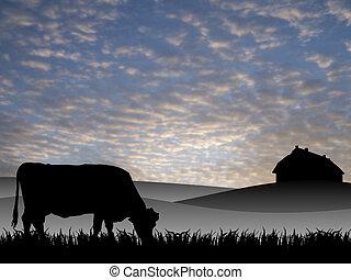 Vaca en pasto al atardecer en verano
