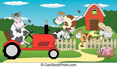 Vaca montada en un tractor
