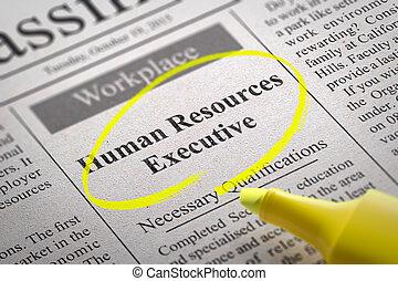 vacante, ejecutivo, recursos, humano, periódico.