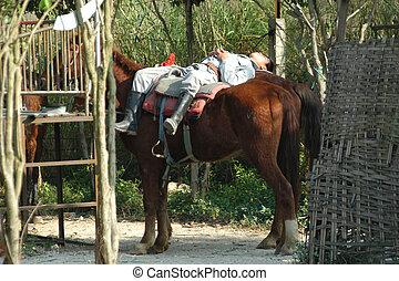 Vaquero descansando
