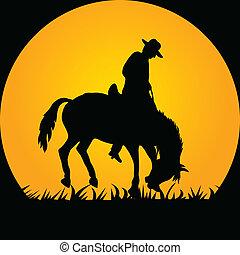 Vaquero en el caballo salvaje