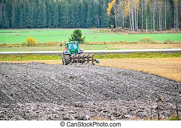 varmland, campo, suecia, ploughman, arado