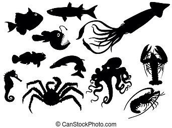 Vector, animales marinos siluetas