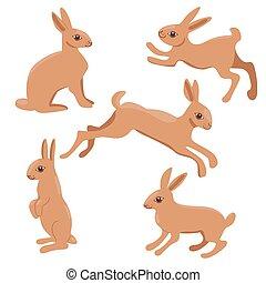 vector, blanco, fondo., conjunto, graphics., aislado, conejos