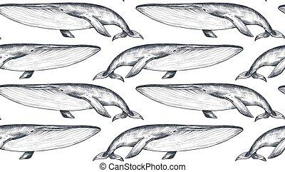 vector, bosquejo, ballenas, seamless, submarino, patrón, monocromo, style., world.