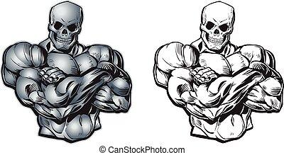 vector, caricatura, muscular, cráneo, torso, cabeza