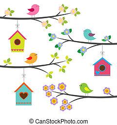 vector, conjunto, aves, birdhouses.