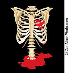 Vector. Corazón rojo dentro del esqueleto
