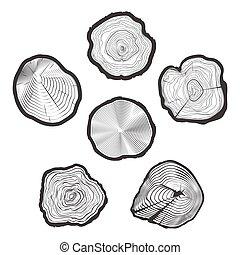 Vector de anillos de árboles