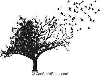 Vector de arte de las aves
