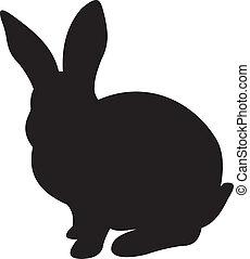 Vector de conejo