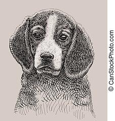 Vector de dibujo de perro