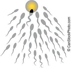Vector de esperma y óvulo