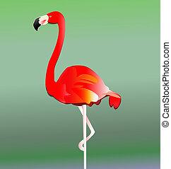 Vector de pájaro Flamingo Eps10
