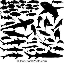 Vector de pescado listo