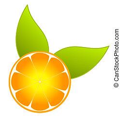 Vector de rebanadas naranja
