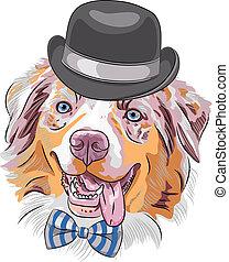 Vector dibujo animado perro hipster Australiano Shepherd