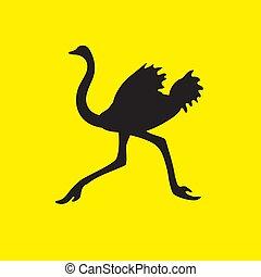 vector, fondo., amarillo, imagen, avestruz, silueta, flees, pájaro, aislado