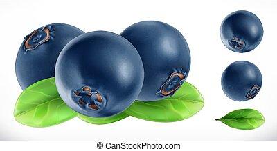 vector, fruta, realista, fresco, blueberry., icono, 3d