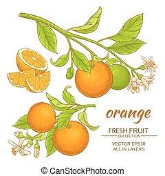 Vector naranja listo